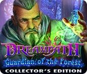 Feature screenshot game Dreampath: Guardian of the Forest Collector's Edition