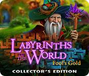 Feature screenshot game Labyrinths of the World: Fool's Gold Collector's Edition
