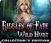 Riddles of Fate: Wild Hunt Collector's Edition game play
