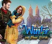 Winter in New York game play