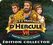 Les 12 Travaux d'Hercule VII: Tout en toisant la Toison Édition Collector game play