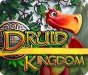 La fonctionnalité de capture d'écran de jeu Druid Kingdom