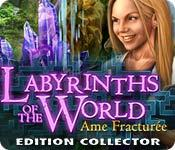 La fonctionnalité de capture d'écran de jeu Labyrinths of the World: Ame Fracturée Edition Collector