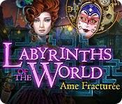 La fonctionnalité de capture d'écran de jeu Labyrinths of the World: Ame Fracturée