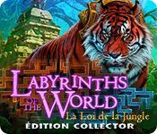 Labyrinths of the World: La Loi de la Jungle Édition Collector game play