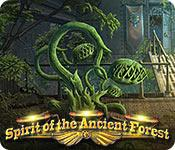 Spirit of the Ancient Forest game play
