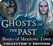 Funzione di screenshot del gioco Ghosts of the Past: Bones of Meadows Town Collector's Edition