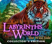 機能スクリーンショットゲーム Labyrinths of the World: The Wild Side Collector's Edition