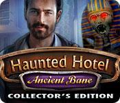 Functie screenshot spel Haunted Hotel: Ancient Bane Collector's Edition