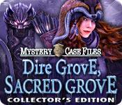 Functie screenshot spel Mystery Case Files: Dire Grove, Sacred Grove Collector's Edition