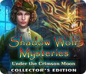 Shadow Wolf Mysteries: Under the Crimson Moon Collector's Edition game play